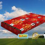 Toko Online Kasur Busa Super Befoam untuk Wilayah Amansari, Karawang